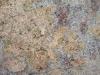 Cappucino Closeup
